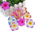 10pcslot-5-9cm-Plumeria-Foam-Frangipani-Flower-Artificial-Egg-Flower-Heads-for-DIY-Hairband-Wreath-Wedding-Home-DecorationGrayS