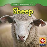 Sheep (Animals That Live on the Farm)