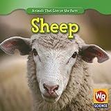 Sheep, JoAnn Early Macken, 1433924692