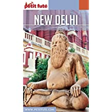 NEW DELHI 2017 Petit Futé (Country Guide)