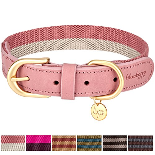 Blueberry Pet 6 Colors Vintage Chic Two Tone Soft Genuine Leather and Polyester Webbing Dog Collar in Pink and Grey, Large, Neck 18