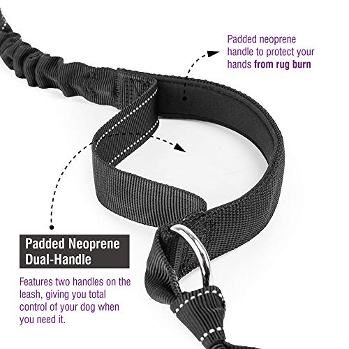 Hands Free Dog Leash, Dog Walking and Training Belt with Shock Absorbing Bungee Leash for up to 180lbs Large Dogs, Phone Pocket and Water Bottle Holder, Fits All Waist Sizes From 28'' to 48'' by FURRY BUDDY (Image #3)