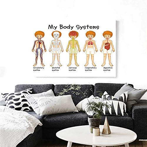 Warm Family Educational Canvas Wall Art for Bedroom Home Decorations Different Systems in Human Nervous Skeletal Digestive Body Anatomy Young Kids Wall Stickers 32