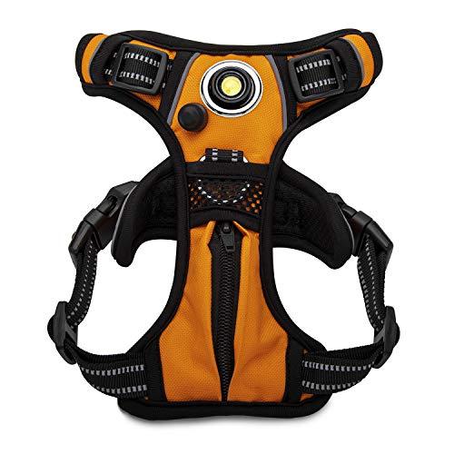 Headlight Harness Arnés para Faros Delanteros para Mascotas, sin tirones, con luz LED integrada para Seguridad (Naranja), M