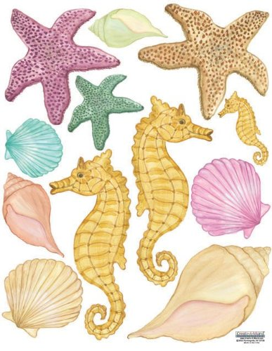 Create-A-Mural Sea Shells Wall Stickers, Beach Removable Peel and Stick Ocean Decor