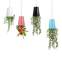 Hanging Flower Pots, Plastic Sky Planter Upside Down Flower Pots Sky Planters Green Plants Pot for Home Garden Indoor Decoration (White)