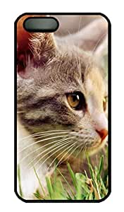 Lazy Kitten In Grass Cover Case Skin for iPhone 5 5S Hard PC Black