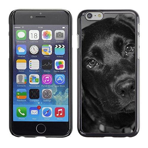 """Premio Sottile Slim Cassa Custodia Case Cover Shell // F00010969 chien // Apple iPhone 6 6S 6G 4.7"""""""