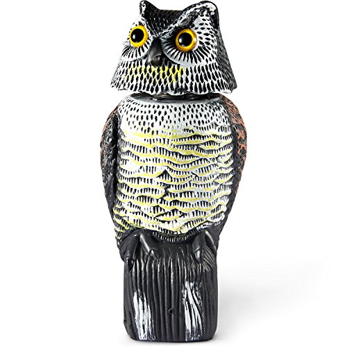 Ohuhu Horned Owl Decoy with Tweet (Motion Sensor), Natural Enemy Pest Deterrent Scarecrow with Rotating Head, Bird Control Repellents, Needs 3 X AA Batteries to Make the Owl Tweet (Owl Head Decoy)