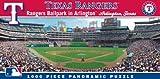 MasterPieces MLB Stadium Panoramic Jigsaw Puzzle, 1000-Piece
