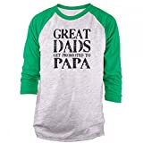 Best Fresh Tees Dad Tshirts - Vine Fresh Tees - Great Dads Get Promoted Review