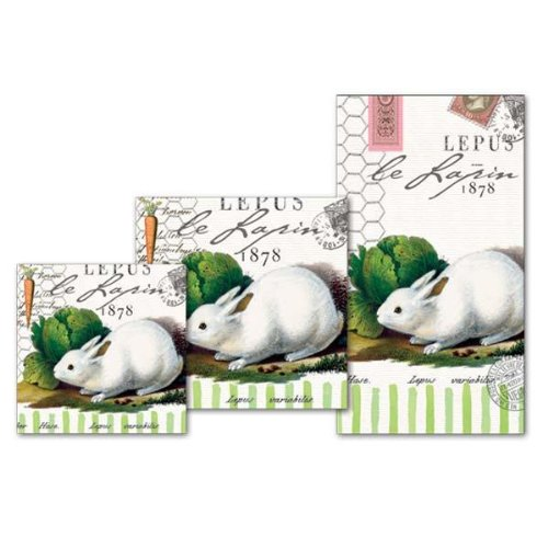 - Michel Design Works Bunnies Lunch Napkin, 20-Pack, 3-Ply