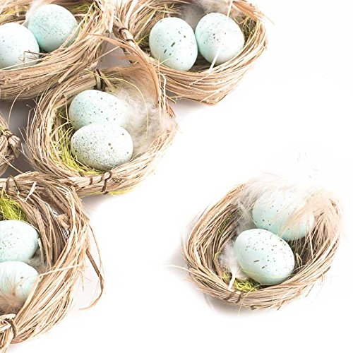 Package of 6 Light Blue Artificial Egg F - Birds Nest Shopping Results