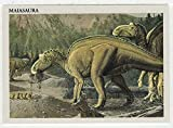 Maiasaura - Dinosaurs: The Mesozoic Era (Trading Card) # 35 - Redstone Marketing 1993 Mint