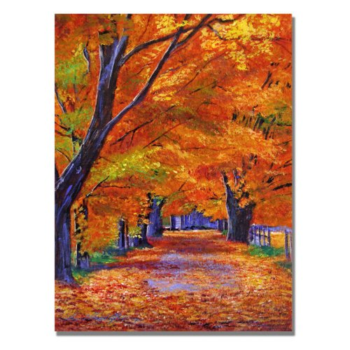 Trademark Fine Art Leafy Lane by David Lloyd Glover Canvas Wall Art, autumn wall art