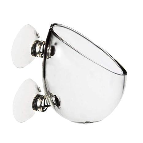 quanjucheer - Soporte de Pared para Acuario o pecera, Cristal Transparente