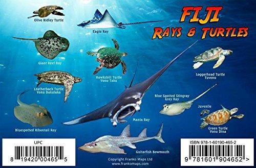 Fiji Sharks, Rays & Turtles Franko Maps Laminated ()