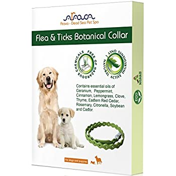 Arava Flea and Tick Control Collar for Dogs and Puppies, Length-25'' - Natural active ingredients, Safe for Babies, Natural Coating Safely Repels Pests - Prevention, Control & Enhanced Defense