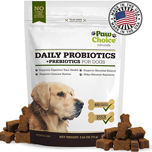 Cheapest Probiotics for Dogs with Prebiotics - Daily Chews for Digestion, Regularity, Diarrhea Relief, Plus Supports Immune System and Health - Natural Supplement & Treat Made in USA Check this out.