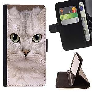 KingStore / Leather Etui en cuir / Samsung Galaxy S3 MINI 8190 / Blanca Singapur Gatito Gato Devon