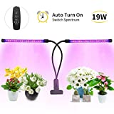 LOBKIN Grow Light for Indoor Plants, 38 LED Bulbs Timming Plant Grow Lamp with Red, Blue Spectrum, 3/9/12H Timer, 2-Head Divide Control Adjustable Gooseneck, 10 Dimmable Levels (Black)