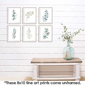 Botanical Prints Wall Art – Eucalyptus Leaves – (Set of 6) – Unframed – 8x10s