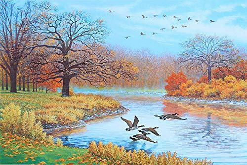 Diy 5D Diamond Painting By Number Kit Full Rhinestone Pasted Diy 15.7X19.7Inch Painting Embroidery Cross Stitch- Country Wild Duck River(Frameless) ()