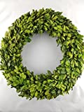 Preserved Boxwood Wreath 14 in. by Tradingsmith