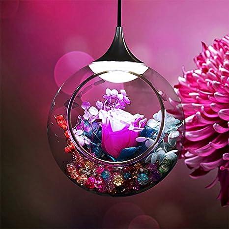 SUHANG Lámparas de araña Interior Planta De Simulación De Luz Eterna Luz Eterna Flower Shop Decorativos