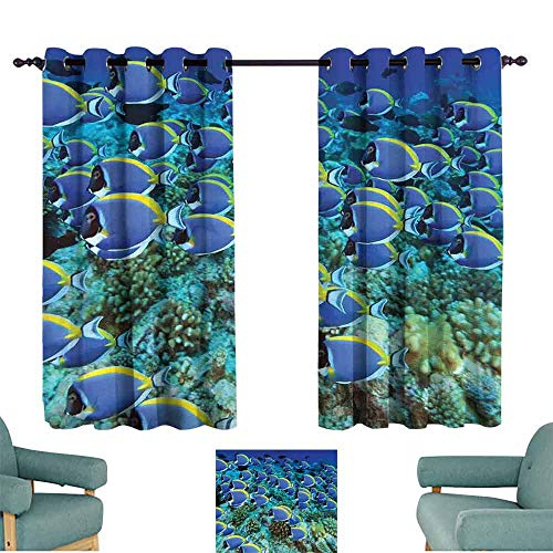 - Mannwarehouse Ocean Polyester Curtain School of Powder Blue Tang Fishes in The Coral Reef Maldives Deep Seas Suitable for Bedroom Living Room Study, etc.55 Wx45 L Aqua Blue and Yellow