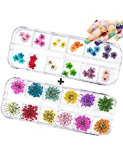 60PCS Nail Dried Flowers - 24 Colors 3D Dry Flowers Nail Art Stickers Decoration Mini Real Natural Nail Supplies Tips Manicure Decor Mixed Accessories(24PCS Starry and 36PCS Five Flower)