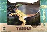 Limited Edition Terra Prehistoric Roaring UtahRaptor measures approximately 7.25 inches tall and 11 inches long