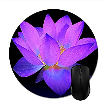 Amazon round mousepads purple lotus flower and its meaning round mousepads purple lotus flower and its meaning mouse mat 8in mightylinksfo
