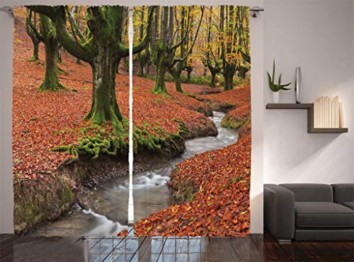- Ambesonne Farm House Decor Collection, Flowing Stream on Colorful Autumn Forest Leaves Gorbea Natural Park Spain Picture, Living Room Bedroom Curtain 2 Panels Set, 108 X 84 Inches, Peru Salmon Green