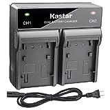 Kastar Fast Dual Charger for JVC SSL-JVC70 SSL-JVC75 BN-S8I50 and JVC GY-HMQ10 GY-LS300 GY-HM200 GY-HM200HW GY-HM200SP SPORTS GY-HM600 GY-HM620U GY-HM650 GY-HM660U GY-HM660SC DT-X Monitors series