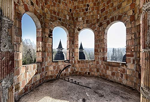 Leyiyi 7x5ft Abandoned Castle Backdrop Tower Room Interior