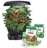 AeroGarden 6 LED with Gourmet Herb Seed Pod Kit and Bonus Tomato Kit