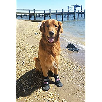 Amazoncom  Kurgo Step N StrobeTM Dog Boots Set Of  Dog - Dog booties for hardwood floors