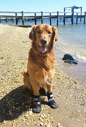 All Weather Neoprene Paw Protector Dog Boots with Reflective Velcro Straps in 5 Sizes! (Lg (3.5x3.5 in.)) Travel Zipper Case Included!