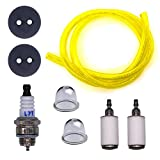 FitBest New Repower Tune-Up Kit for Earthquake E43 E43WC E43CE Auger MC43 MC43E MC43CE MC43RCE MC43ECE Tiller MD43 WE43 WE43CE WE43E Edger Replaces 3004105 300494