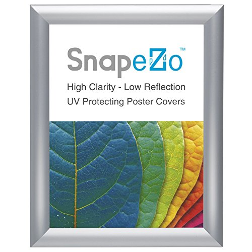 SnapeZo Certificate Frame 8.5x11 Inch, Silver 1 Aluminum Profile, Front-Loading Snap Frame, Wall Mounting, Sleek Series