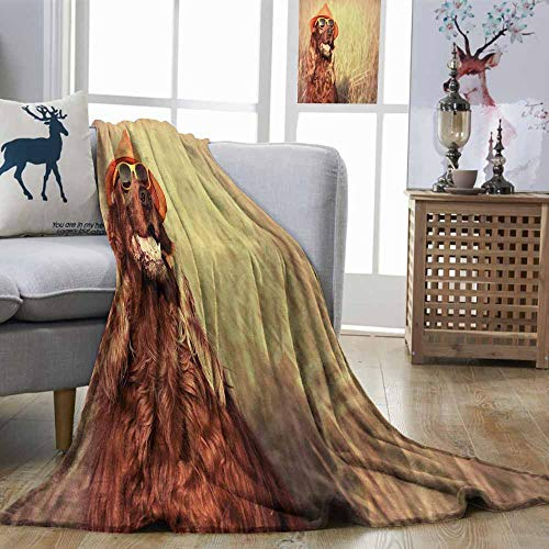 Zmstroy Blanket Sheets Animal Funny Retro Irish Setter Dog Wearing Hat and Sunglasses Humorous Joyful Picture Redbrown Tan Elegant and Comfortable W60 xL91