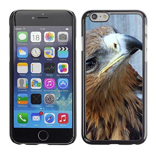 """Premio Sottile Slim Cassa Custodia Case Cover Shell // F00028772 Sore aigle // Apple iPhone 6 6S 6G PLUS 5.5"""""""