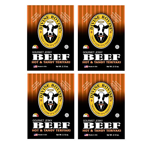 Beef Jerky - Gourmet Jerky Multi Pack | 4 Packs - Hot & Tangy Teriyaki | Premium Gluten Free Flavors | A Low Carb High Protein Option | Makes a Great Snack for Kids