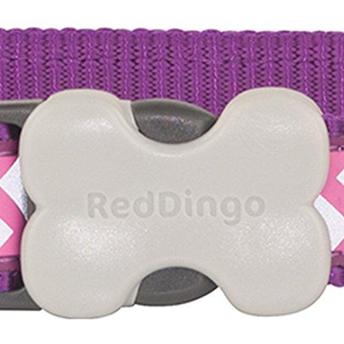 Red Dingo Reflective Ziggy Dog Collar, Medium-Large, Purple