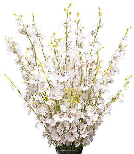 (Silk Flowers in Bulk Wholesale Artificial Orchids, 12 Pcs (Each 38.5