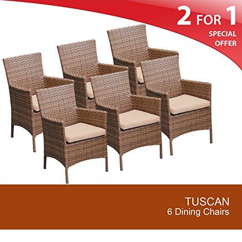 TKC Laguna Wicker Patio Arm Dining Chairs in Wheat (Set of 6) ()
