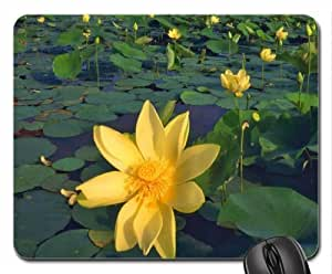 Yellow Waterlilies Mouse Pad, Mousepad (Flowers Mouse Pad)