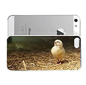 iPhone 5&5S cover case Animals Bird Chicken