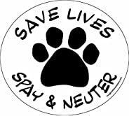 Imagine This 4-3/4-Inch by 4-3/4-Inch Car Magnet Social Issues Circle, Save Lives White Spay and Neuter